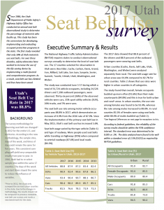 Screen cap of the front of PDF of 2017 seat belt use survey