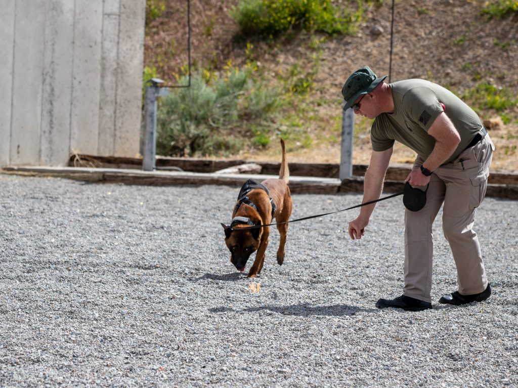 Trooper Elmer and K9 Rocco participate in a K9 detection exercise.