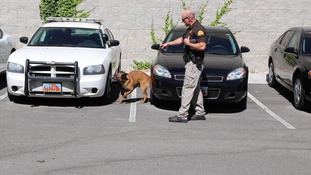 UHP Trooper Loveland points to K9 Drago who gives an alert on an odor.
