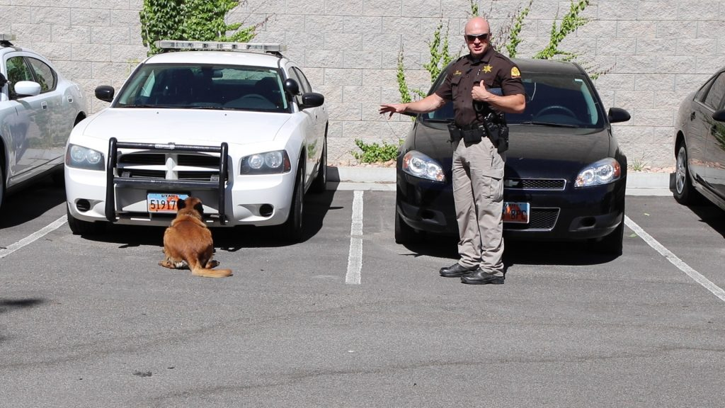 Trooper Loveland gestures toward K9 Drago, who is sitting down in front of a vehicle, indicating that he has detected a drug odor.