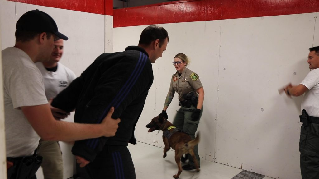 Deputy Wennegren holds onto K9 Nomos as cadets take the cadet in the bite suit into custody.