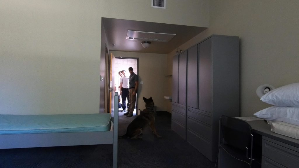 K9 Midas sits down to indicate that he has located a human being, who is hiding in a mobile cabinet.