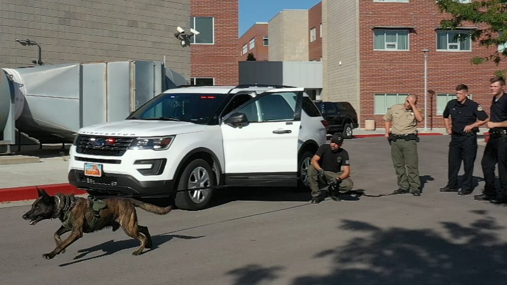 K9 Onyx runs away from handler who is positioned beside his patrol car as cadets look on.